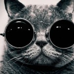 Cat-with-Goggles