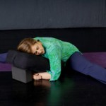 Restorative Yoga Workshop with Mona Anand