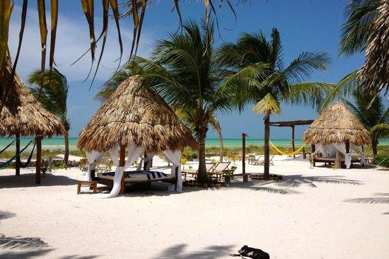 palapas-del-sol-beach
